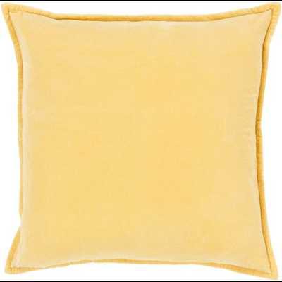 Cotton Velvet 22x22 Pillow Cover with Poly Insert - Neva Home