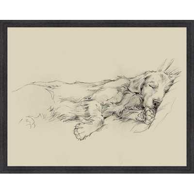 'Dog Days III' Framed Drawing Print - Birch Lane