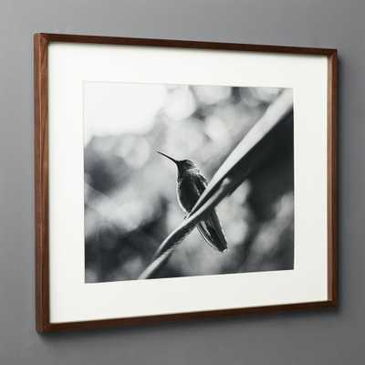 Gallery Walnut Frame with White Mat 16x20 - CB2