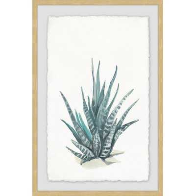 'Tall Succulent' Framed Watercolor Painting Print - Wayfair