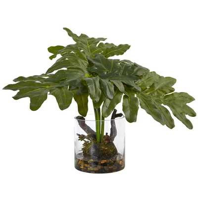 14 in. Philodendron Arrangement with Vase - Home Depot