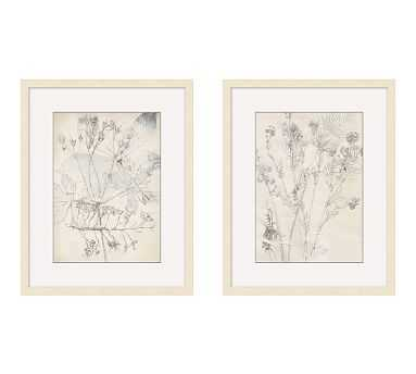 Ivory Foliage Print, Set of 2 - Pottery Barn