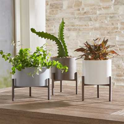 Dundee Tabletop Planters, Set of 3 - Crate and Barrel
