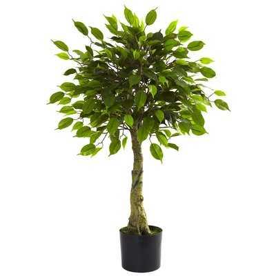 Faux Ficus Tree - Wayfair