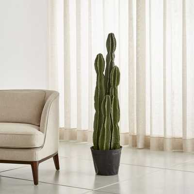 Faux Potted Cactus - Crate and Barrel