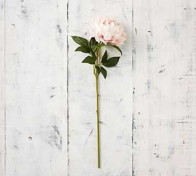 Faux Peony Stems - Pink - Pottery Barn