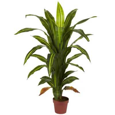 Dracaena Silk Floor Plant in Pot - Wayfair