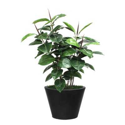 Artificial Rubber Foliage Plant in Planter - Wayfair
