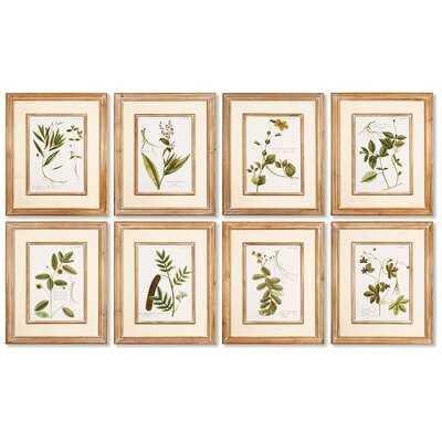 'Spring Botanical' Prints st/8 - Wayfair