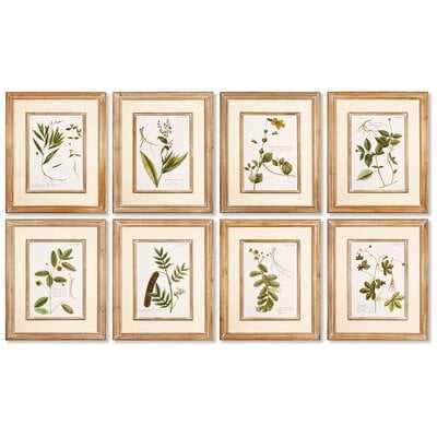 'Spring Botanical' Prints st/8 - Wayfair