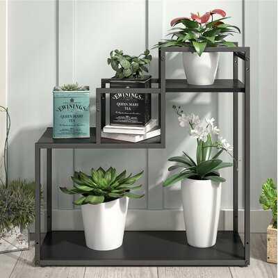 Weston Multi-Tiered Plant Stand - Wayfair
