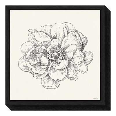Pen and Ink Florals IV by Danhui Nai Framed Canvas Wall Art, Black - Home Depot