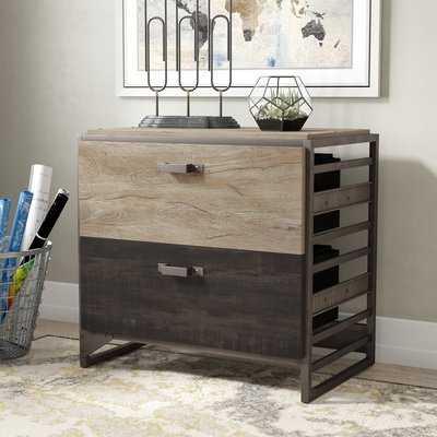 Rosemarie 2-Drawer Lateral Filing Cabinet - AllModern