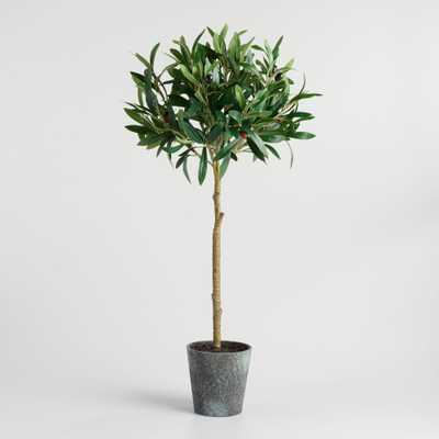Faux Olive Topiary Tree by World Market - World Market/Cost Plus