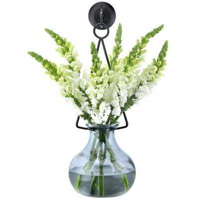 Allis Gourde Wall Vase - Wayfair