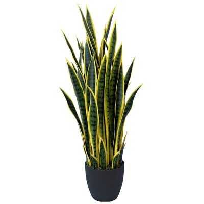 Sansevieria Artificial Snake Plant Succulent in Pot - Wayfair