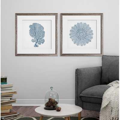 'Coral 2' 2 Piece Framed Graphic Art Print Set - Birch Lane
