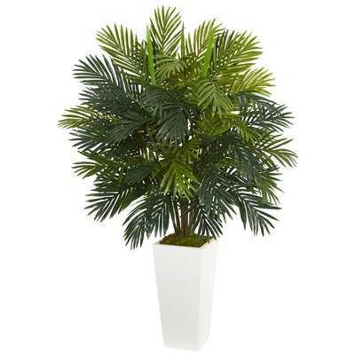 Areca Palm Plant in Tower Ceramic Planter - Wayfair