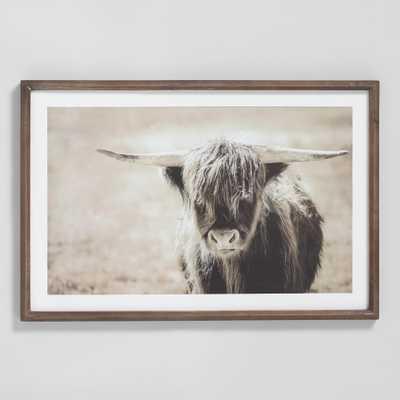 Highland Longhorn By Lesa Ann Molitor Framed Wall Art by World Market - World Market/Cost Plus