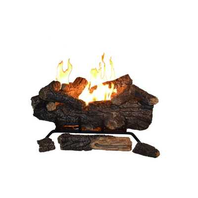 Savannah Oak 24 in. Vent-Free Propane Gas Fireplace Logs with Remote - Home Depot