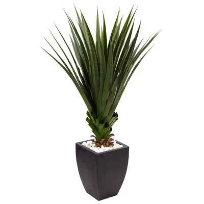 Artificial Spiked Agave Floor Foliage Plant in Planter - Wayfair