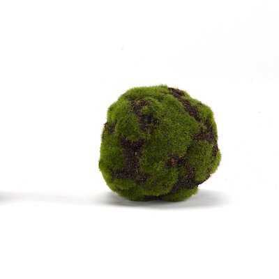 3 - Piece Artificial Moss Ball Plant Set (Set of 3) - Wayfair