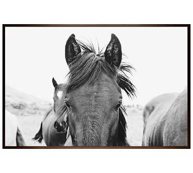 """Hello There Framed Print by Jennifer Meyers, 28x42"""", Wood Gallery Frame, Espresso, No Mat - Pottery Barn"""