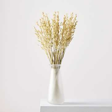 Dried Avena - West Elm