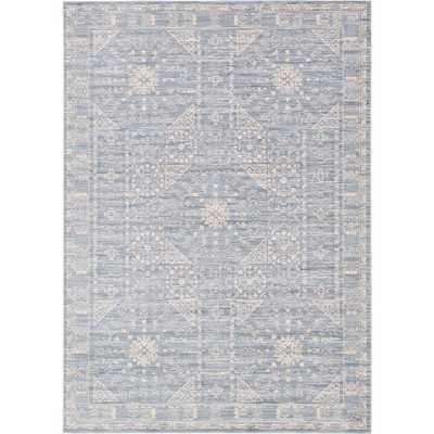 Kensington Blue 7 ft. x 10 ft. Area Rug - Home Depot