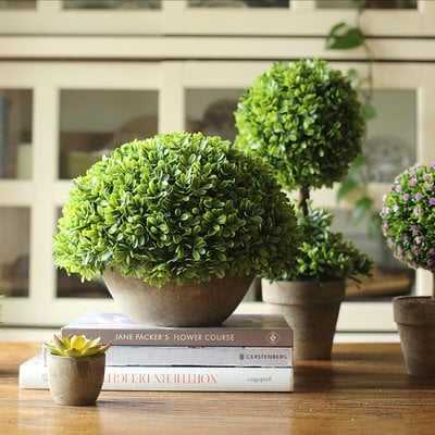 Rustic Boxwood Topiary Pot - Wayfair