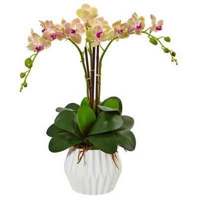 Indoor Phalaenopsis Orchid Silk Arrangement in White Vase - Home Depot