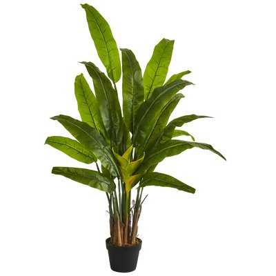 Traveler's Floor Palm Tree in Planter - Wayfair
