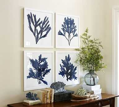 "Framed Coral Prints, Indigo, 20 x 20"", Set of 4 - Pottery Barn"