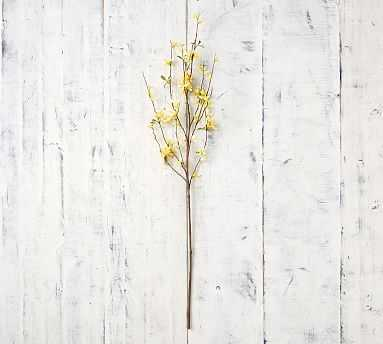 Faux Forsythia Branch - Pottery Barn