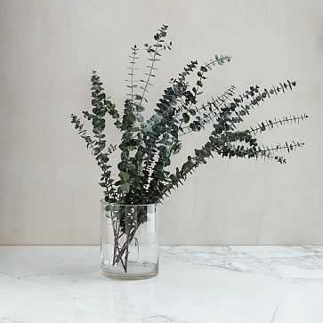 Eucalyptus Bundle, Baby - Dried - West Elm