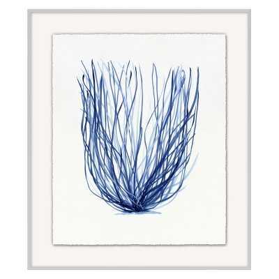 Coral Branch, Series 5 - Williams Sonoma