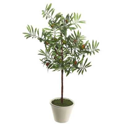 Artificial Green Olive Floor Ficus Tree in Pot - Birch Lane