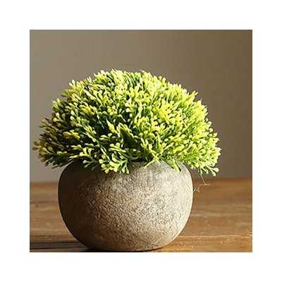 Rustic Artificial Boxwood Desktop Topiary - Birch Lane