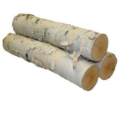 Coman Birch Logs - Birch Lane