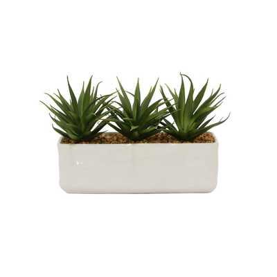 Faux Succulents Pot - Home Depot