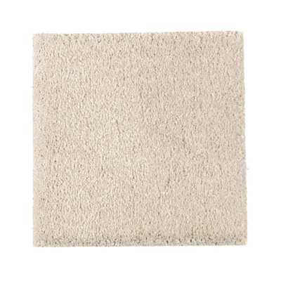 Gazelle II - Color Bare Texture 12 ft. Carpet - Home Depot