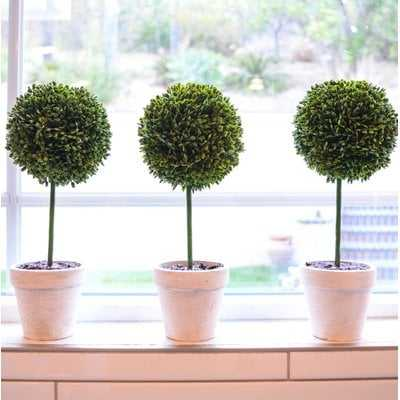 Faux Preserved Boxwood Floor Topiary in Pot - Birch Lane