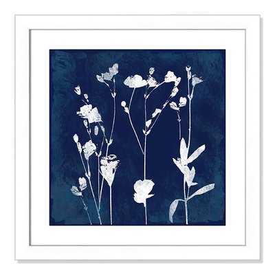 'Cyanotype Botanical I' Framed Graphic Art Print - Wayfair