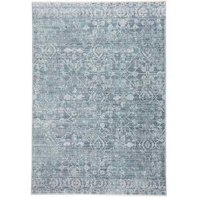 Emmalynn Blue 10' X 14' Rug - Wayfair