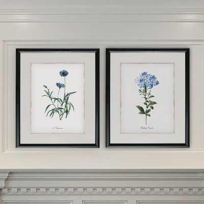 'Imperial Blue' 2 Piece Framed Graphic Art Print Set - Birch Lane