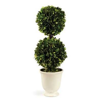 Gaudreau Double Ball Topiary in Pot - Birch Lane