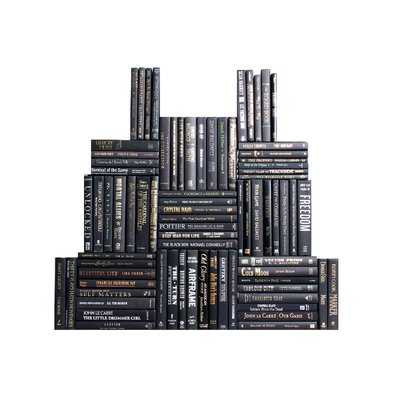 Authentic Decorative Books - By Color Modern Onyx Book Wall, Set of 75 (7.5 Linear Feet) - Wayfair