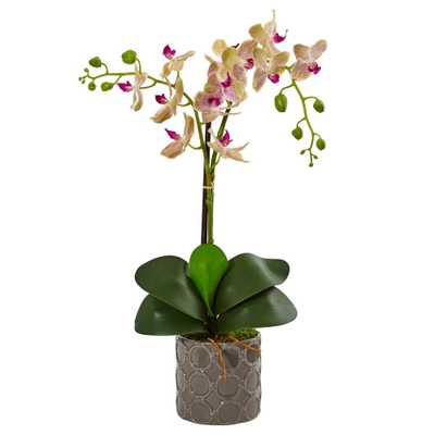 Indoor Double Phalaenopsis Silk Orchid in Gray Ceramic Planter - Home Depot