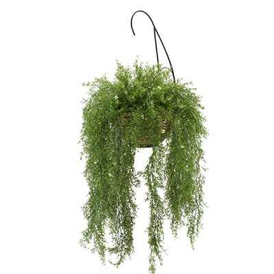 Faux Asparagus Fern Hanging Basket Ivy Plant - Wayfair