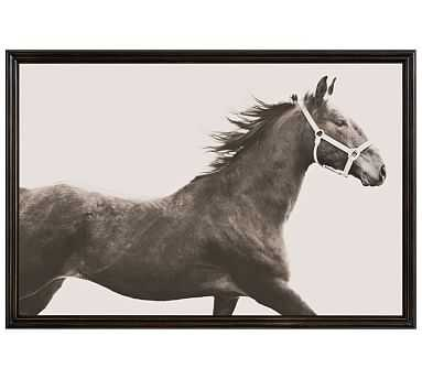 "Vintage Horse by Jennifer Meyers, 42 x 28"", Ridged Distressed, Black, No Mat - Pottery Barn"